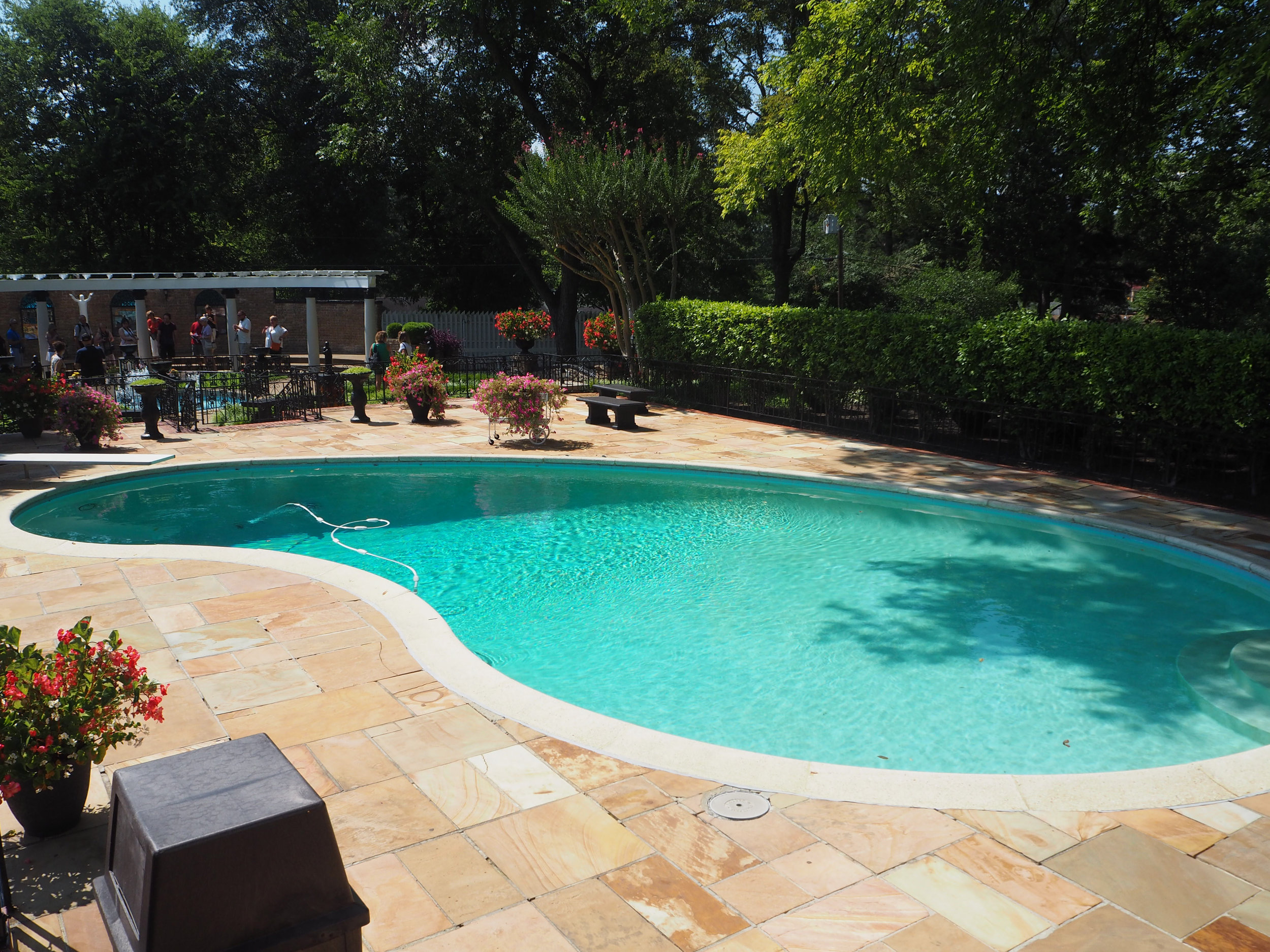 Elvis Presley | Graceland. The pool at Graceland. Click for more photos.