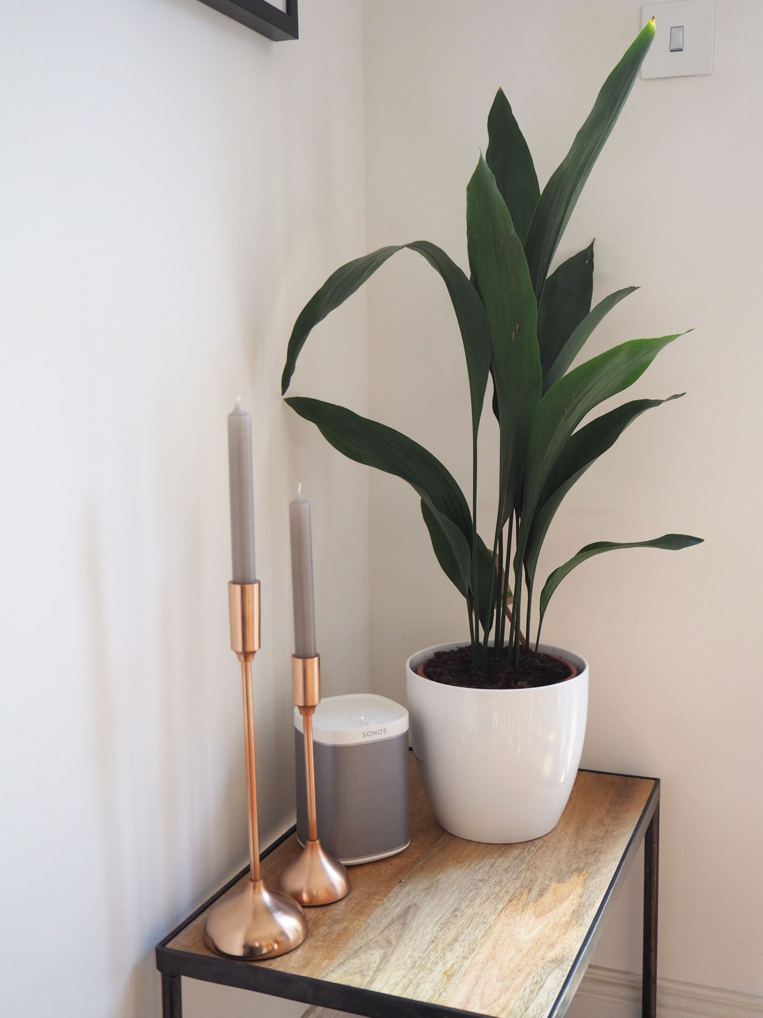 kitchen plants, copper candle sticks and sonos speakers!!