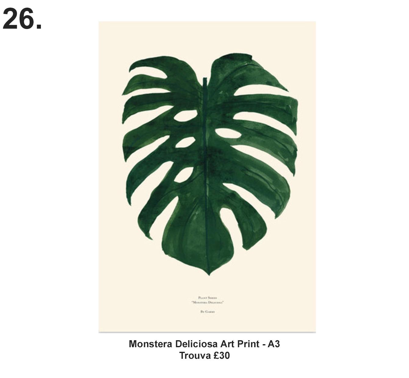 Monstera Deliciosa A3 art print £30