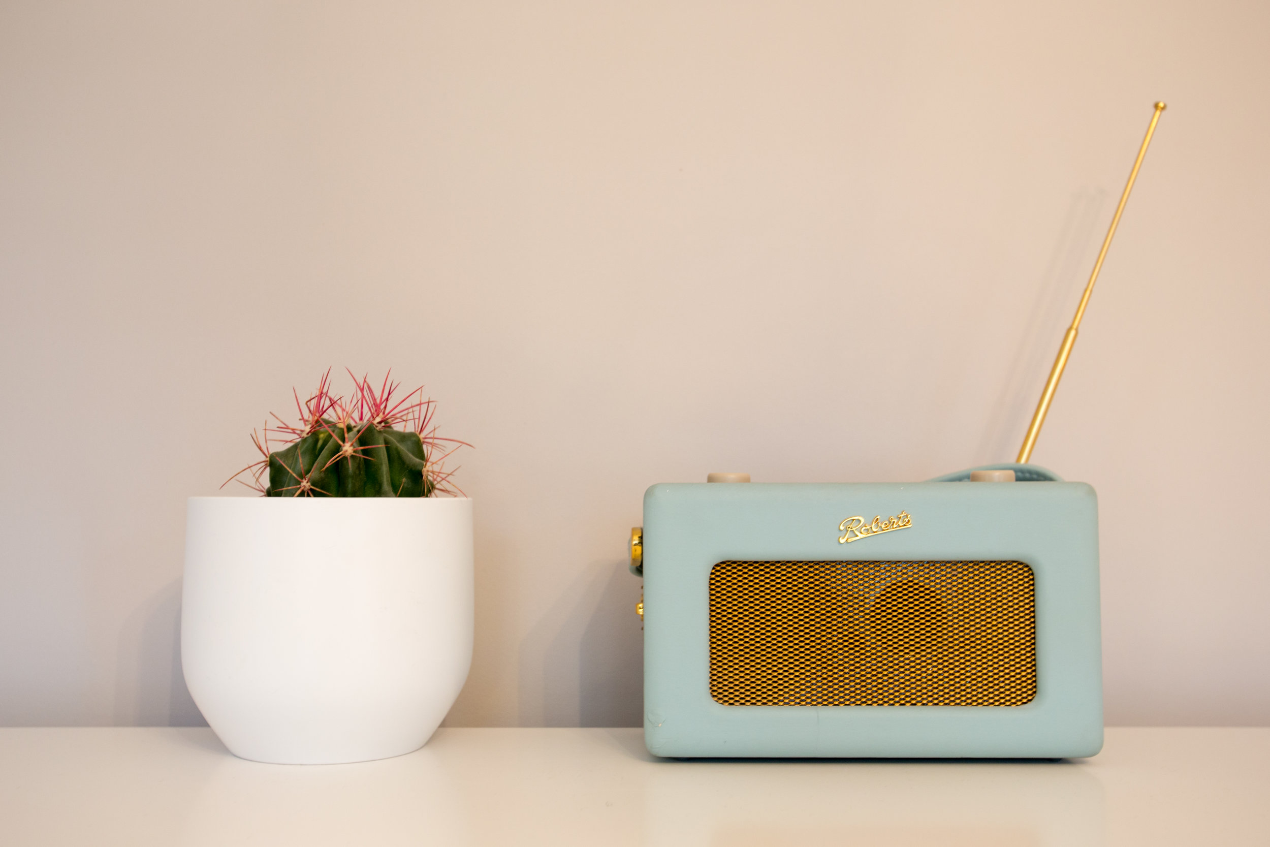 Bedroom details. Roberts Radio and cactus