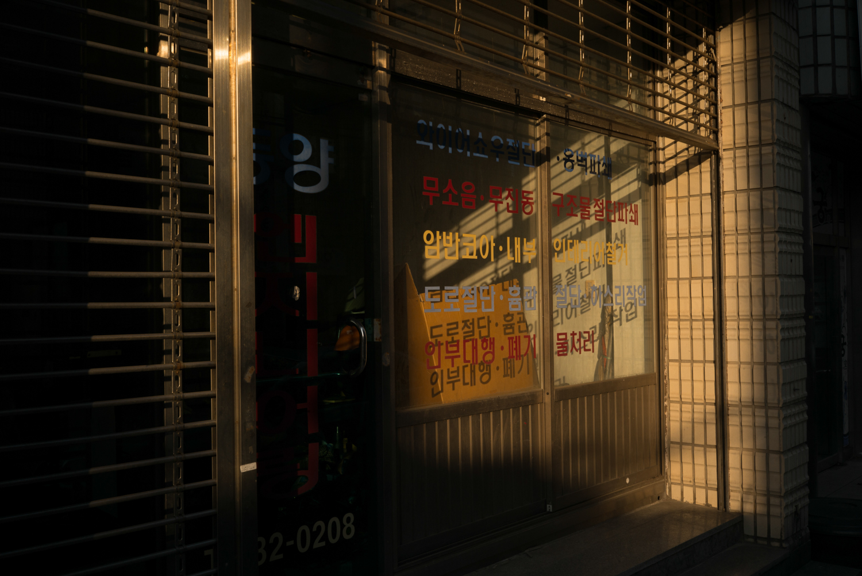 Korea | DZESIKA DEVIC-13.jpg