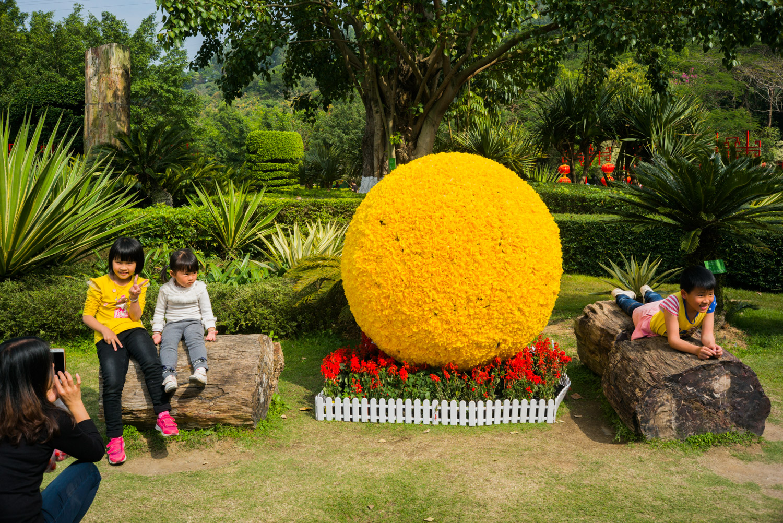 chinese kids in park.jpg