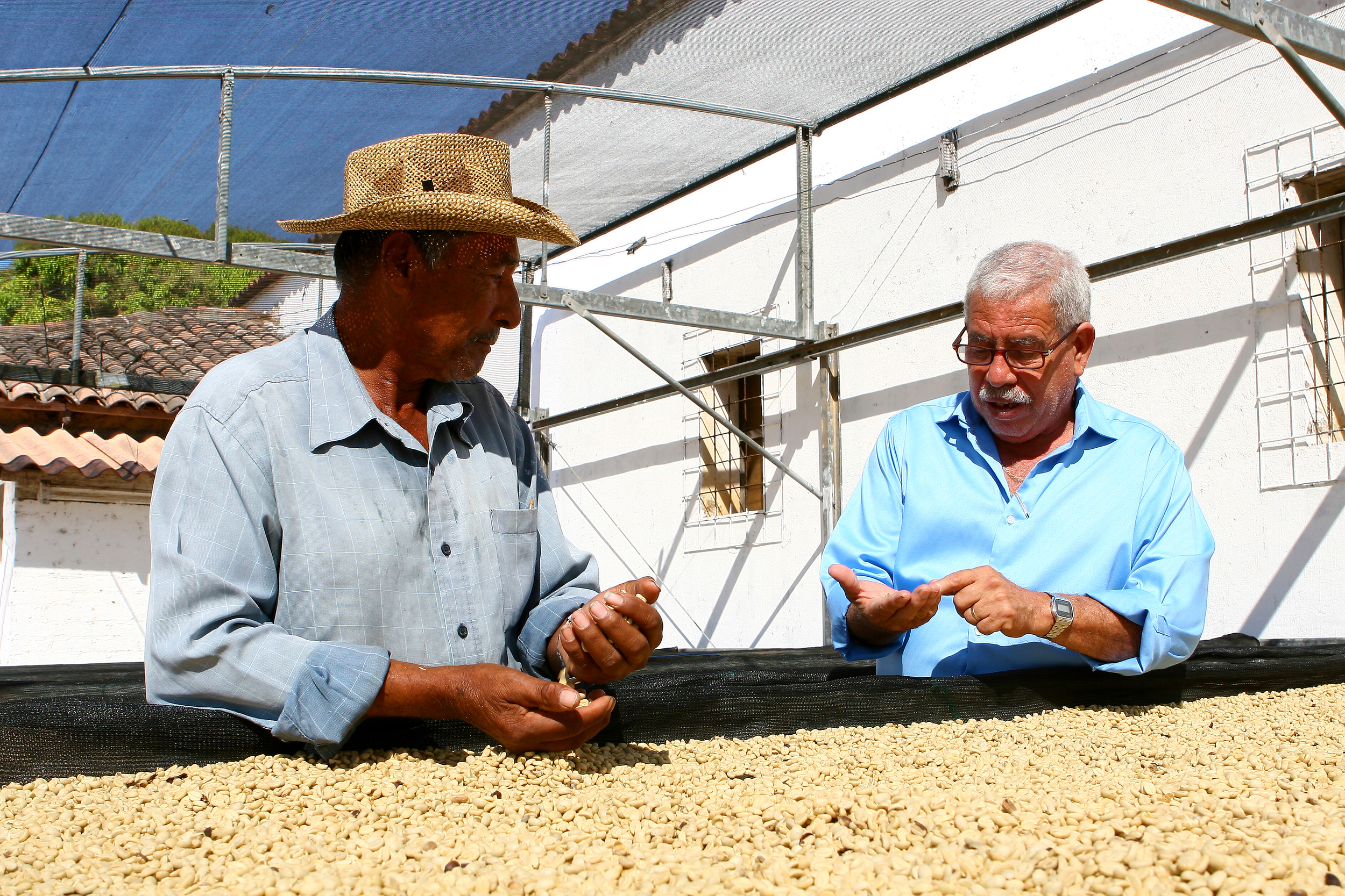 IN ORDER TO OBTAIN the best quality coffee, we offer CONTINUOUS training and guidance to our producers, department heads and general staff by conducting meetings, diverse classes and educational seminars.
