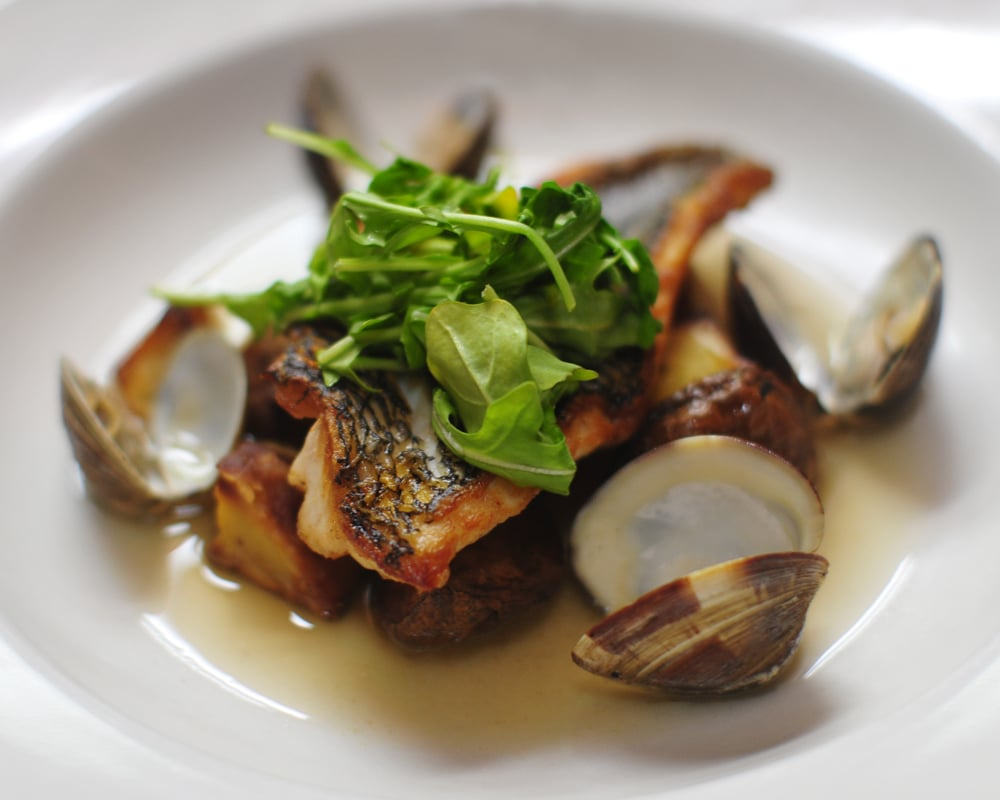 mcgees food fish 3 web-1.jpg