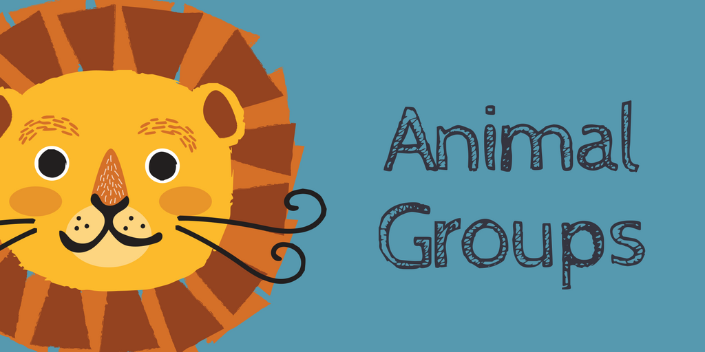 3-LS2-1.   Students will make a claim about the importance of animals living in a group.