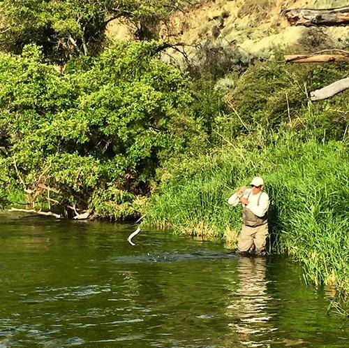 Deschutes River Fly Fishing Guides-Cory Godell
