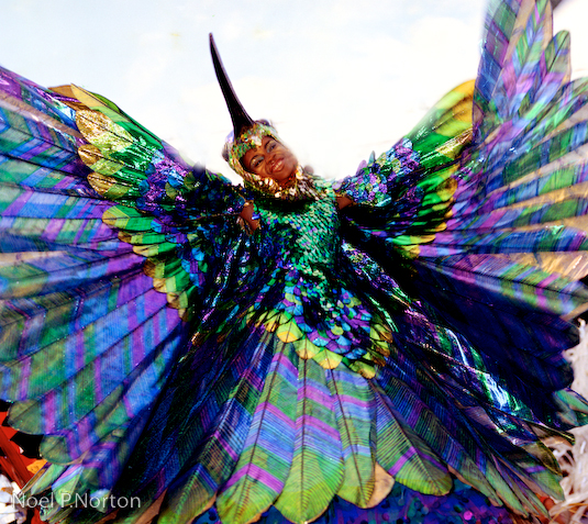 Peter Minshall's Hummingbird, 1974. Photo by Noel Norton
