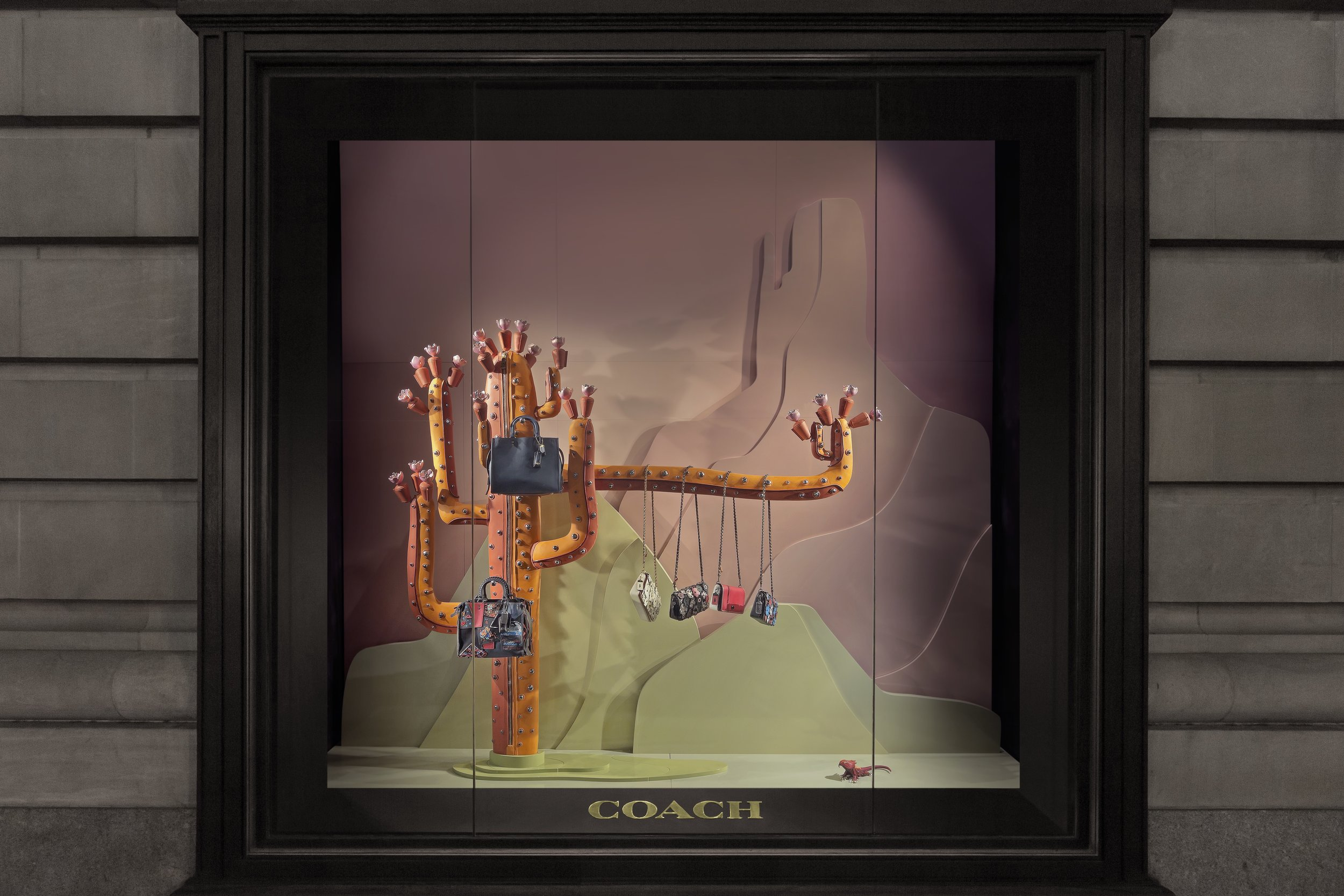 Coach - Cactus