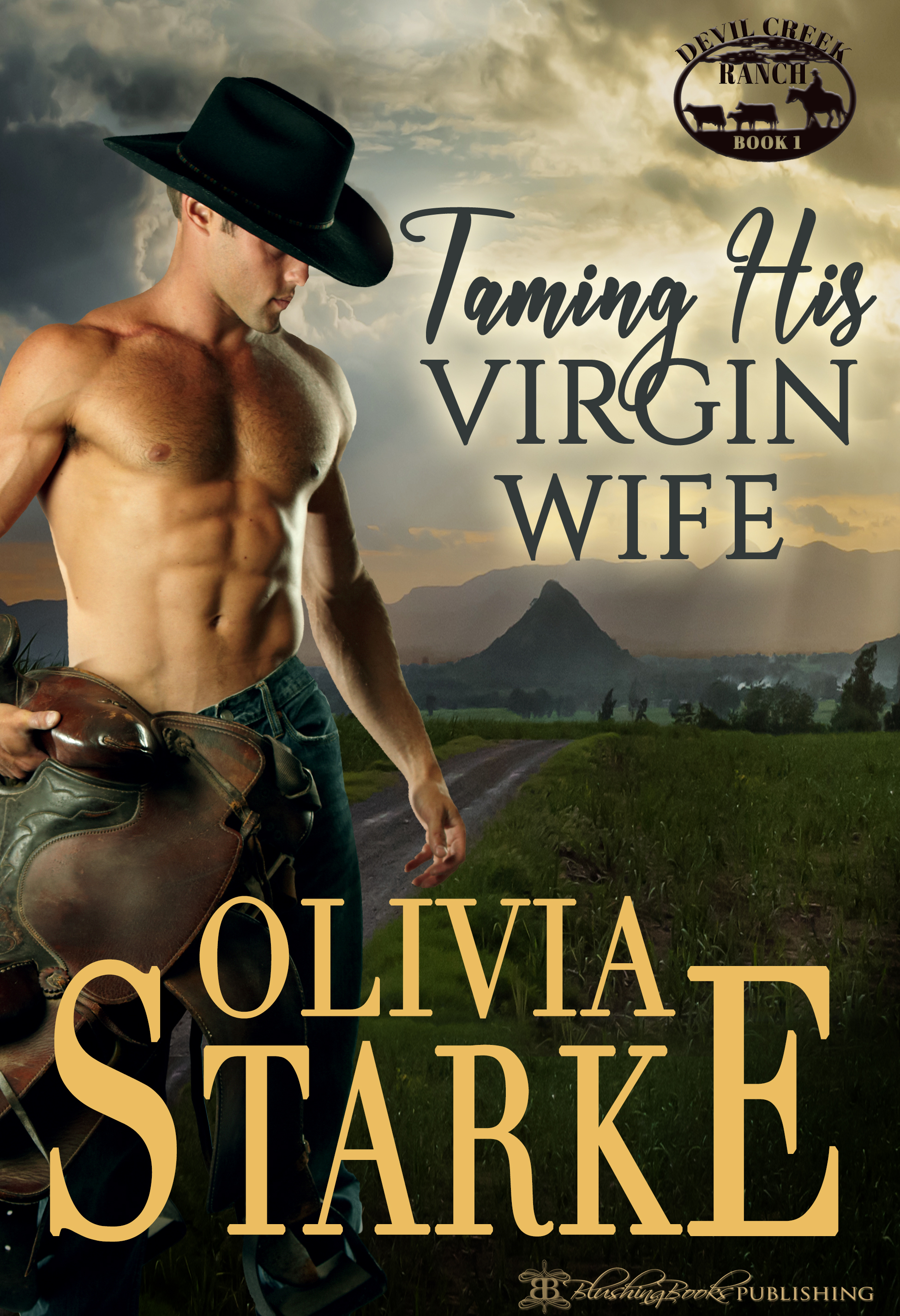 Taming His Virgin Wife - OS promo.jpg
