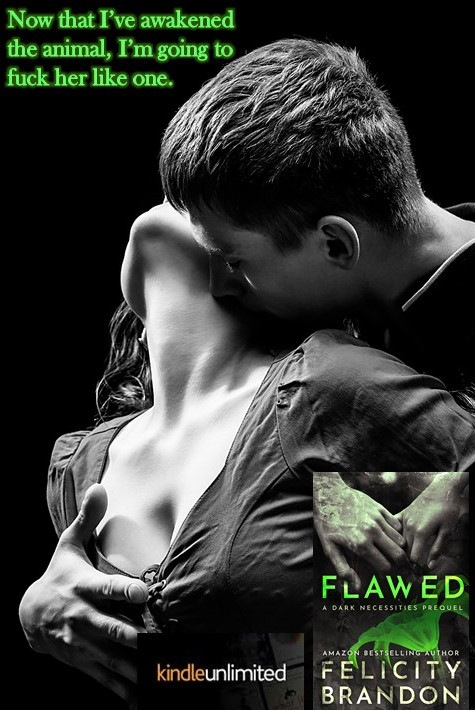 Flawed - FB Teaser 1.jpg