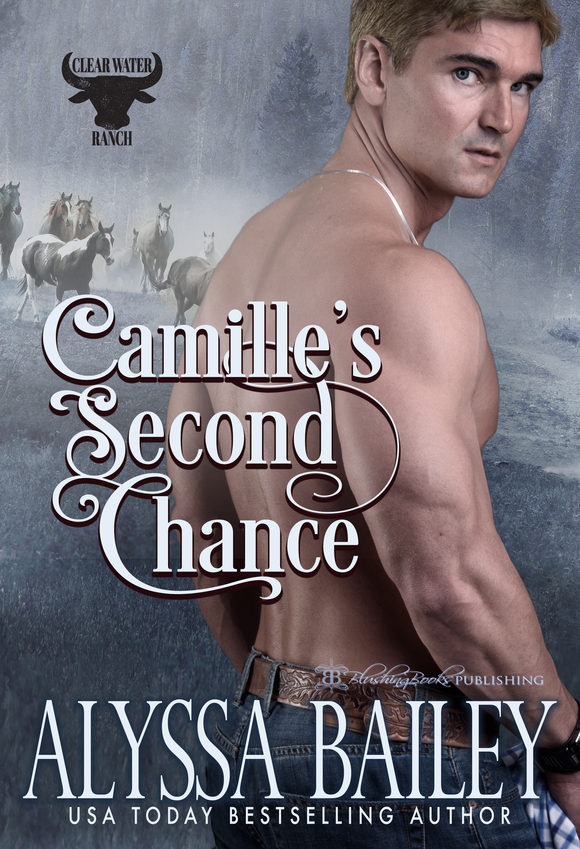 Camille's Second Chance-Alyssa Cover.jpg
