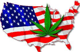 Cannabis USA- coming soon!