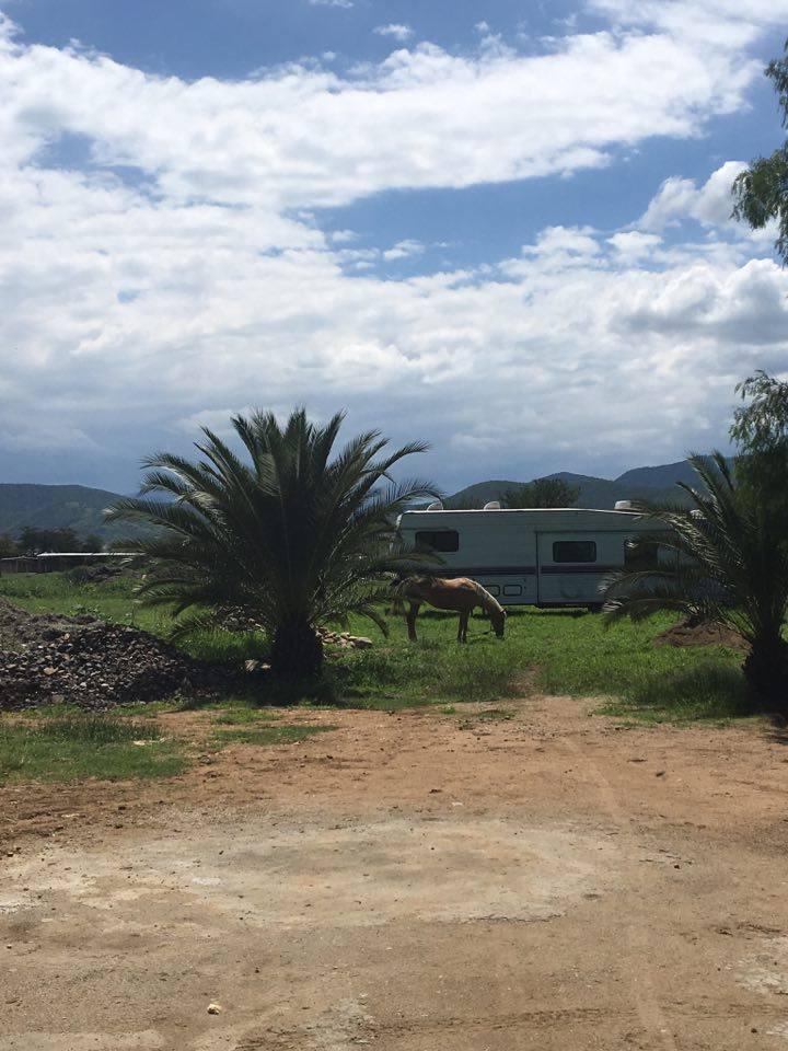 Palenque San Pablo Huixtepec