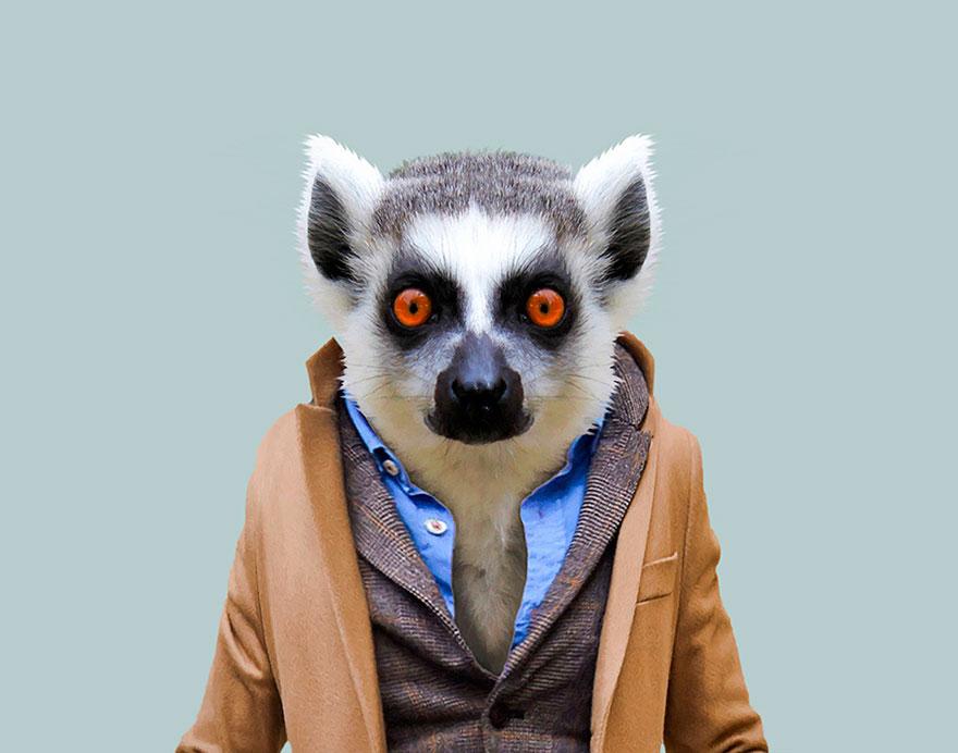 animals-dressed-like-humans-zoo-porraits-yago-partal-109-57d65dbcb522f__880.jpg