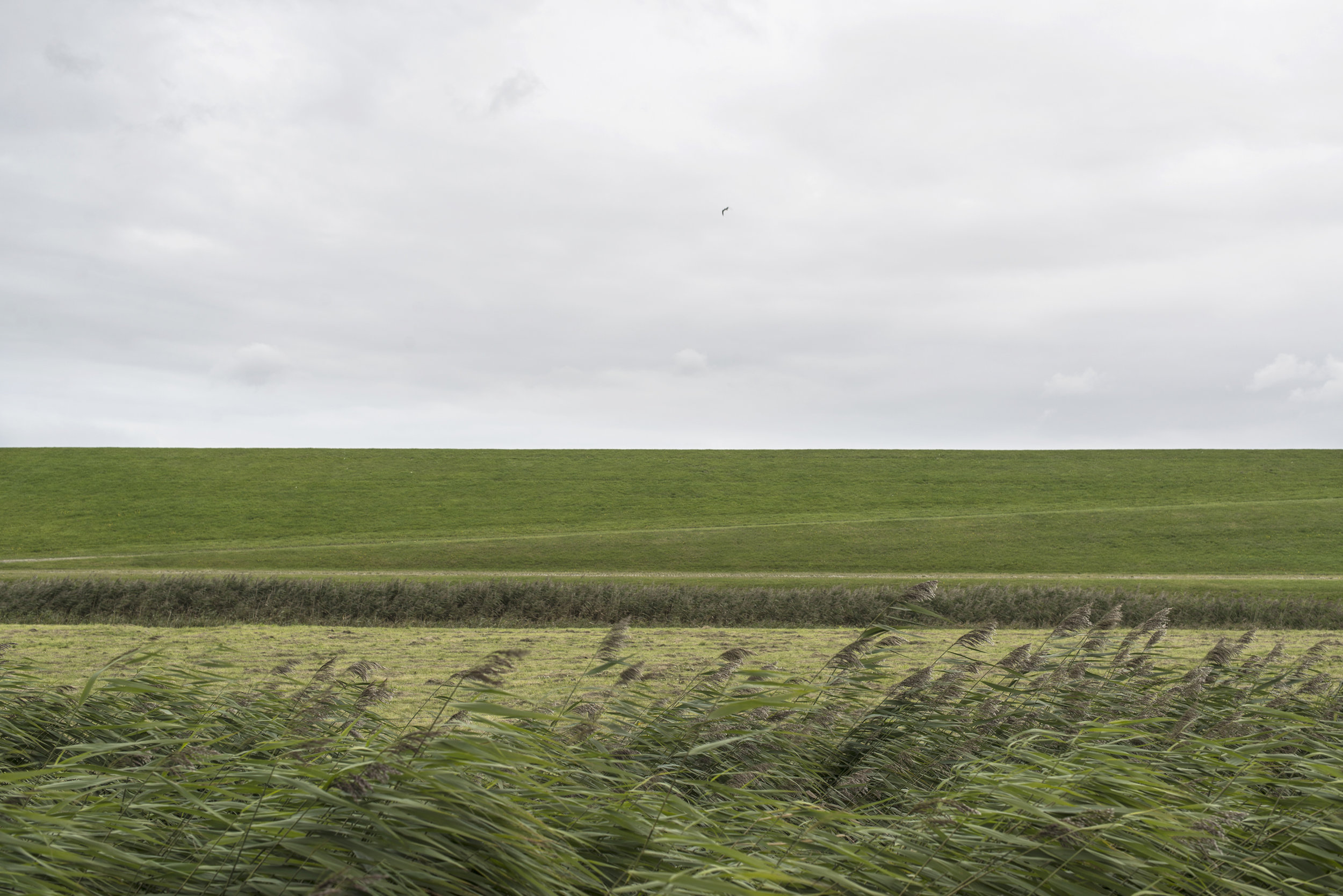 ©-Yorit-Kluitman-Gemeente-Dongeradeel.jpg