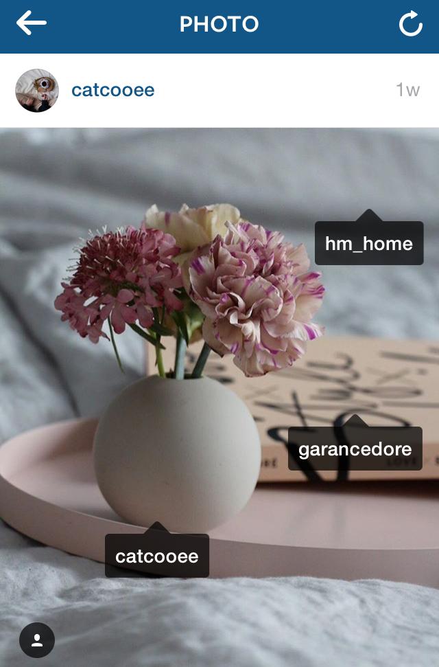 5 Unique Ways to Get More Followers on Instagram | Instagram Tips | solopreneursidekick.com