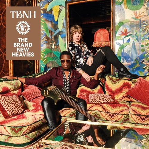 THE BRAND NEW HEAVIES: THESE WALLS