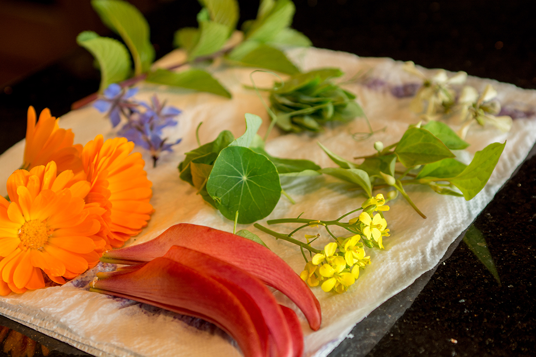 Edible flowers from the garden