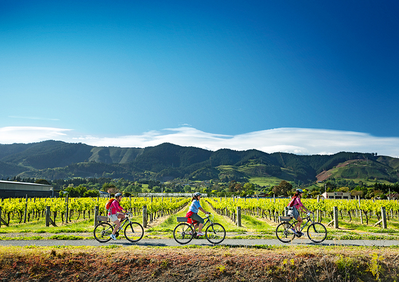 bespoke cycling experiences in the Nelson-Tasman area
