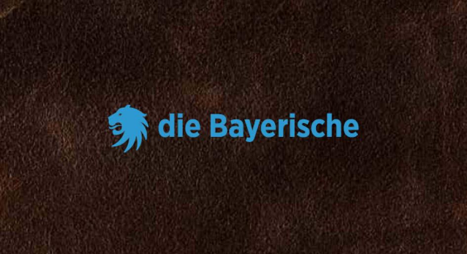 Kunde: Die Bayerische  Projekt: CD-Manual