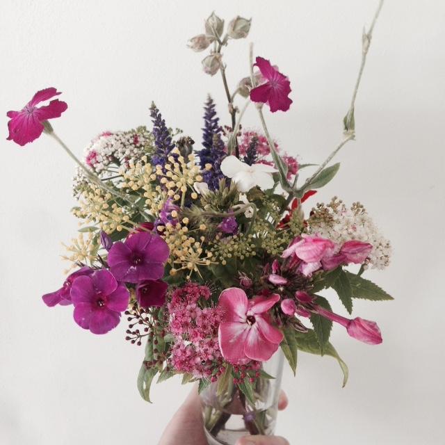 Flower bloom_011.JPG