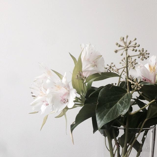 Flower bloom_013.JPG