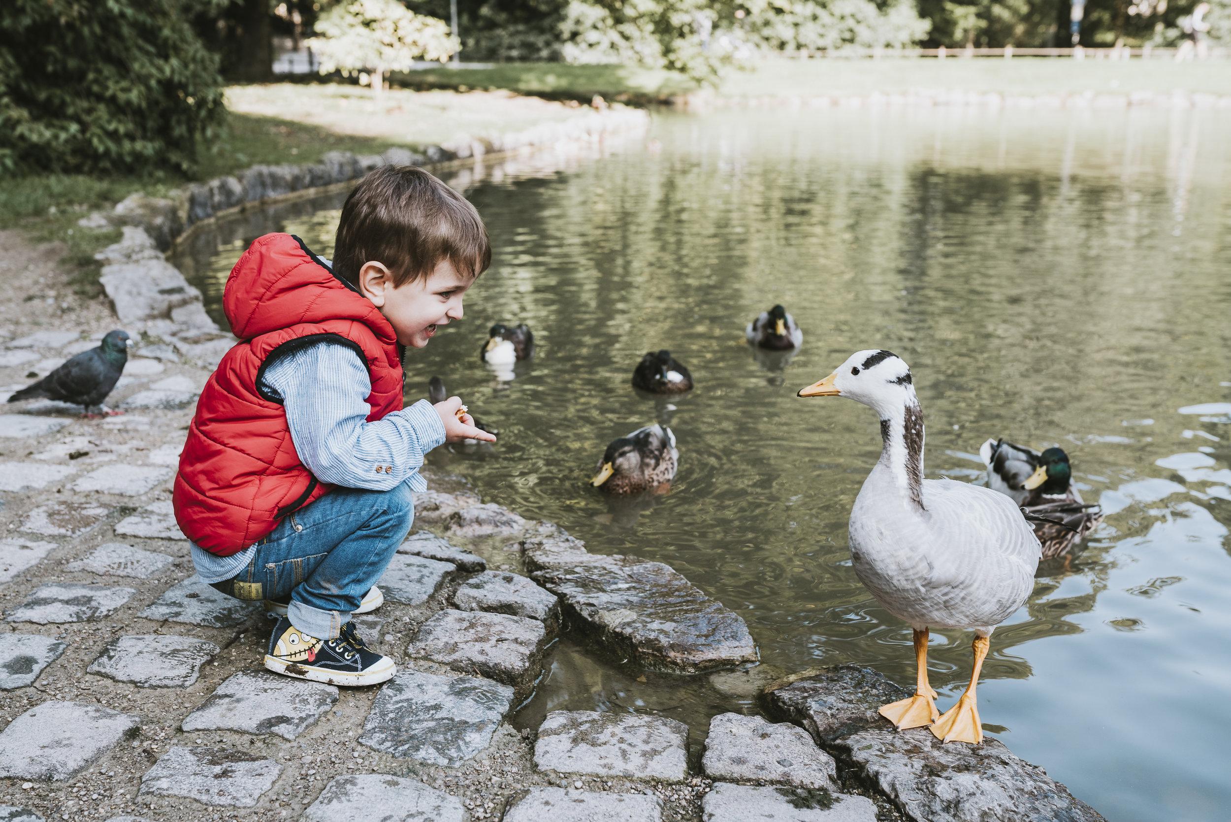Feeding the ducks at the Englischergarten
