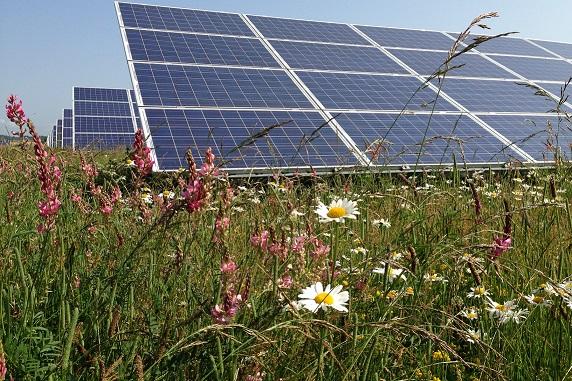 Solar Panels at Westmill Solar Farm.