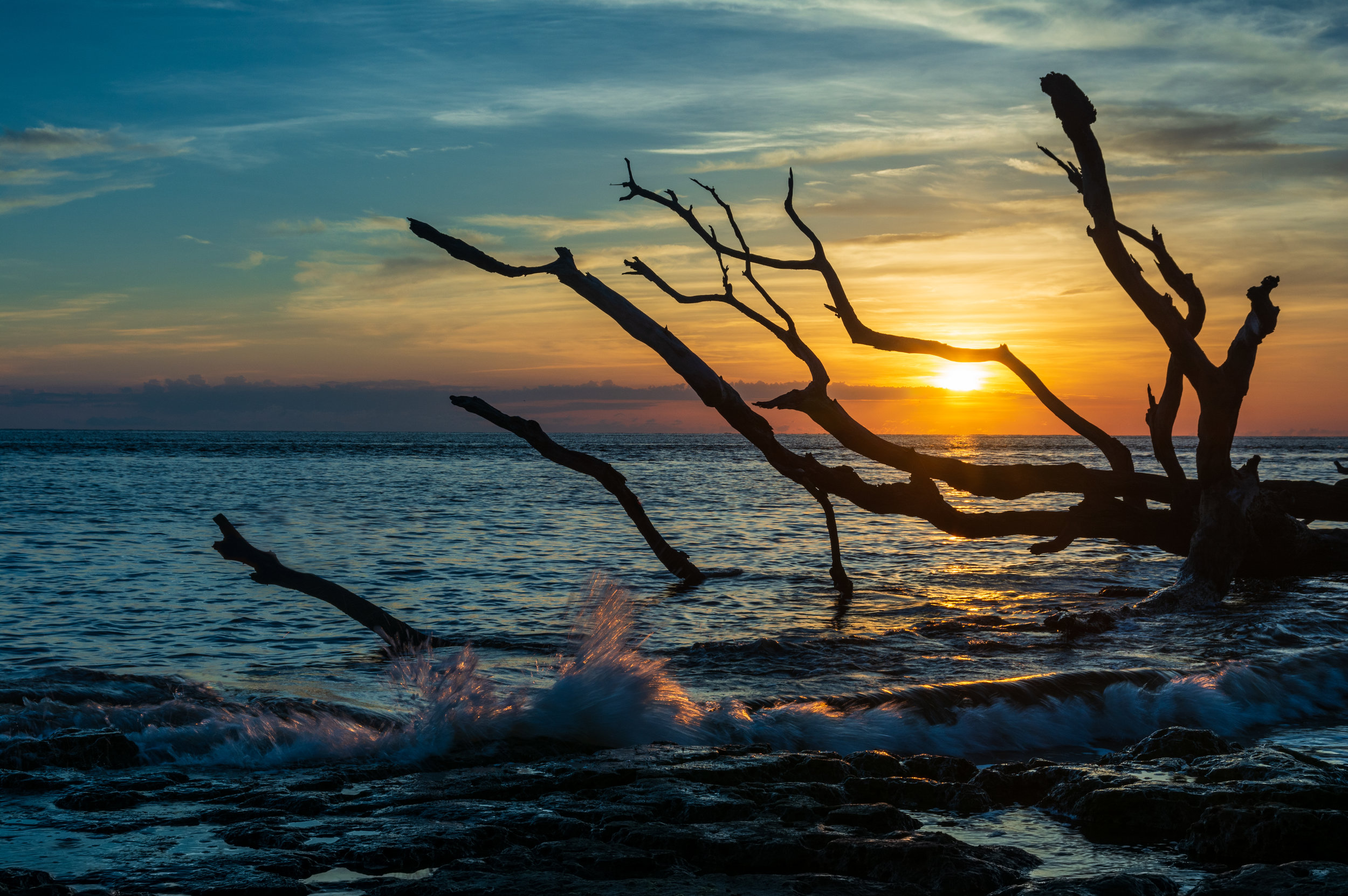 Driftwood Blue Sunrise