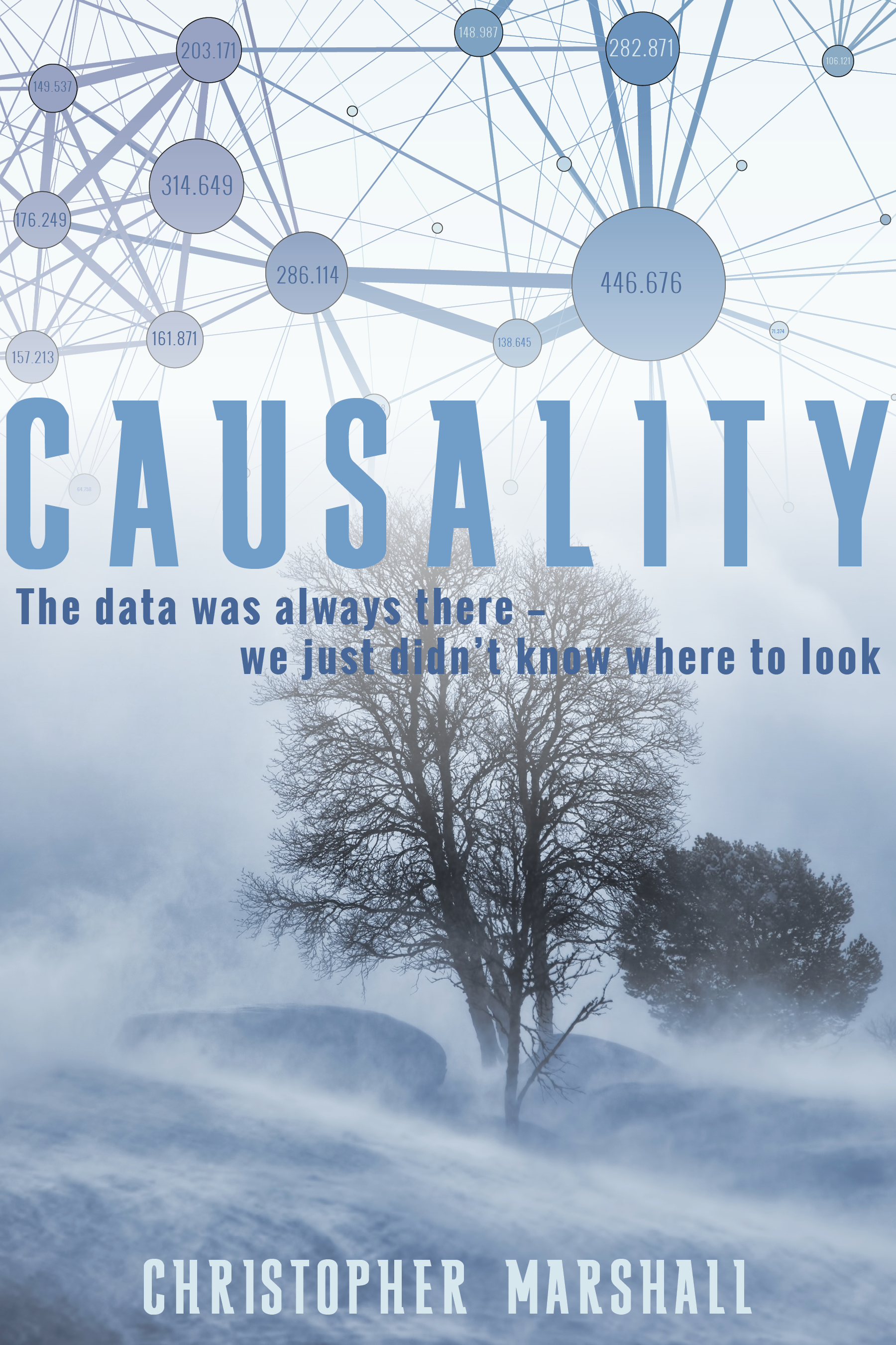 Causality by Christopher Marshall