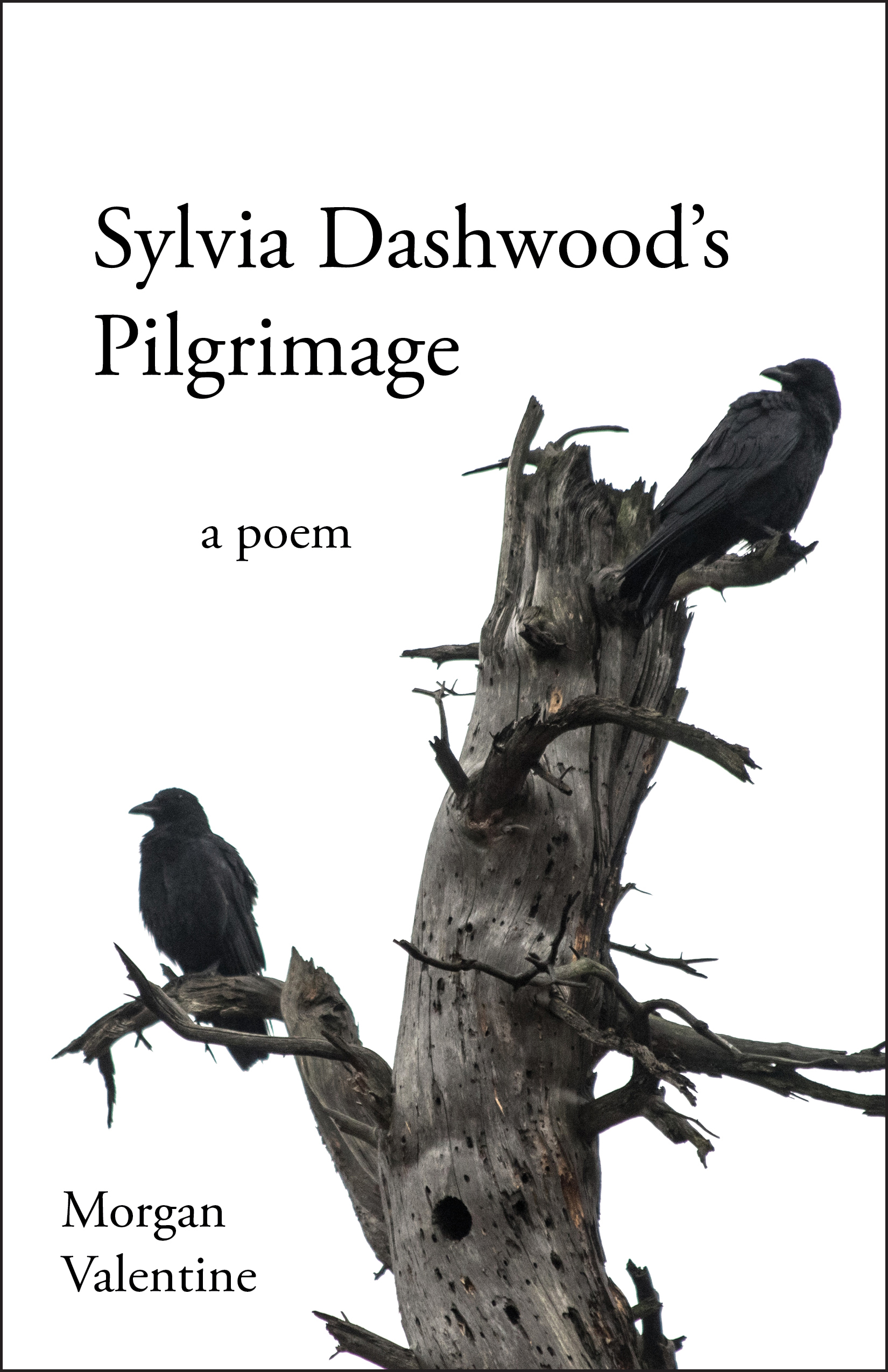 Sylvia Dashwood's Pilgrimage by Morgan Valentine