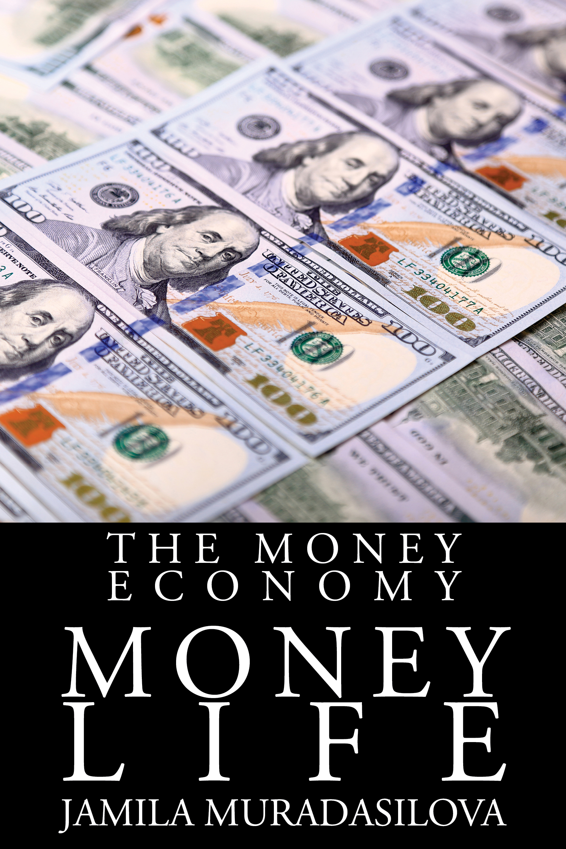 The Money Economy: Money Life  Available in  paperback .  Cover artwork and interior layout design provided by Cover&Layout