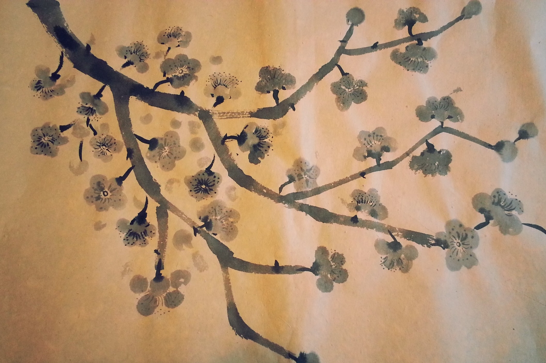 Cherry Blossom ~ Chinese Art, Asian Art, Pattern Design, Shaheen Kasmani