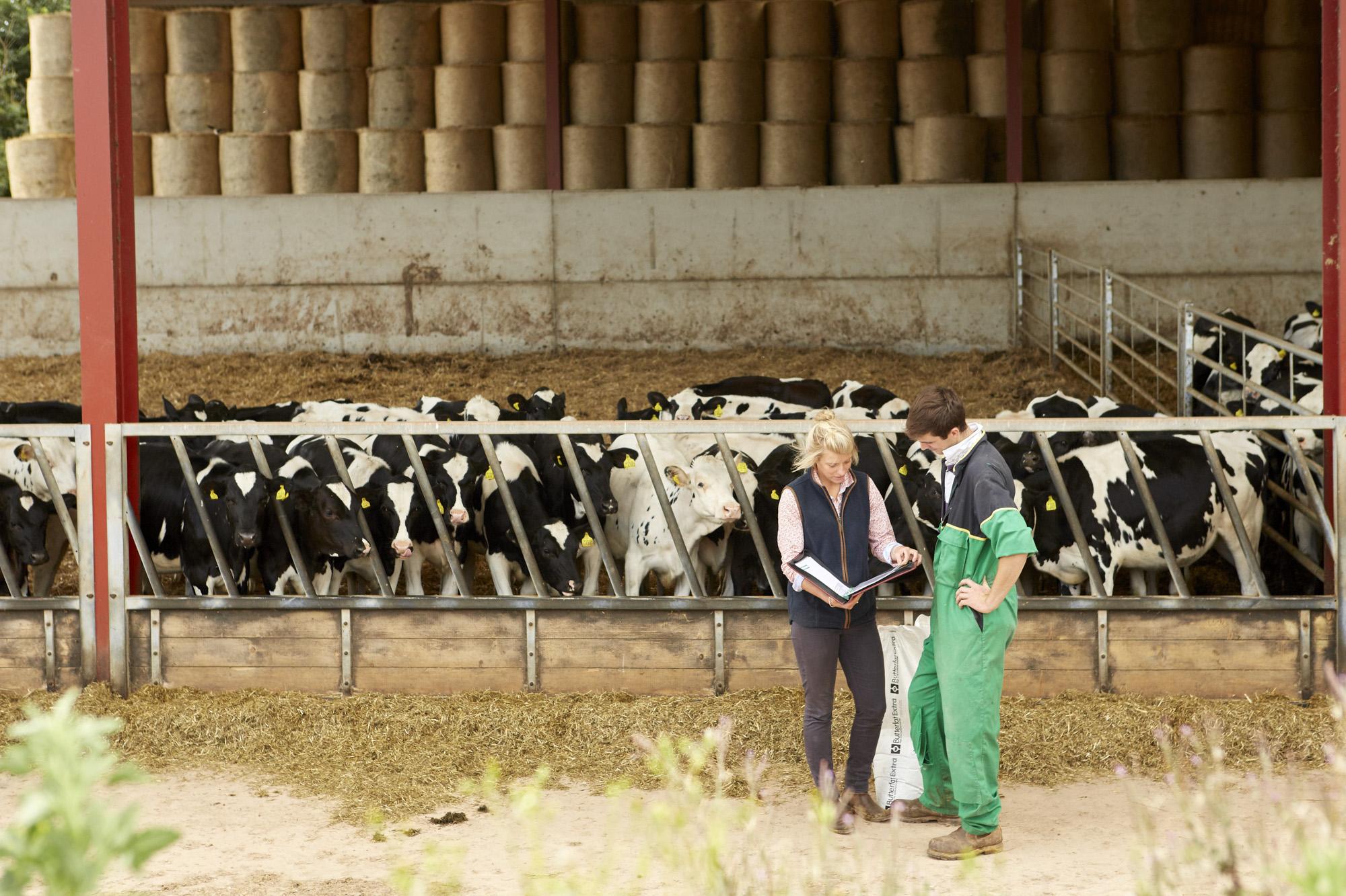 AGRICENTRE_QUANTOCK_FARM_019.jpg