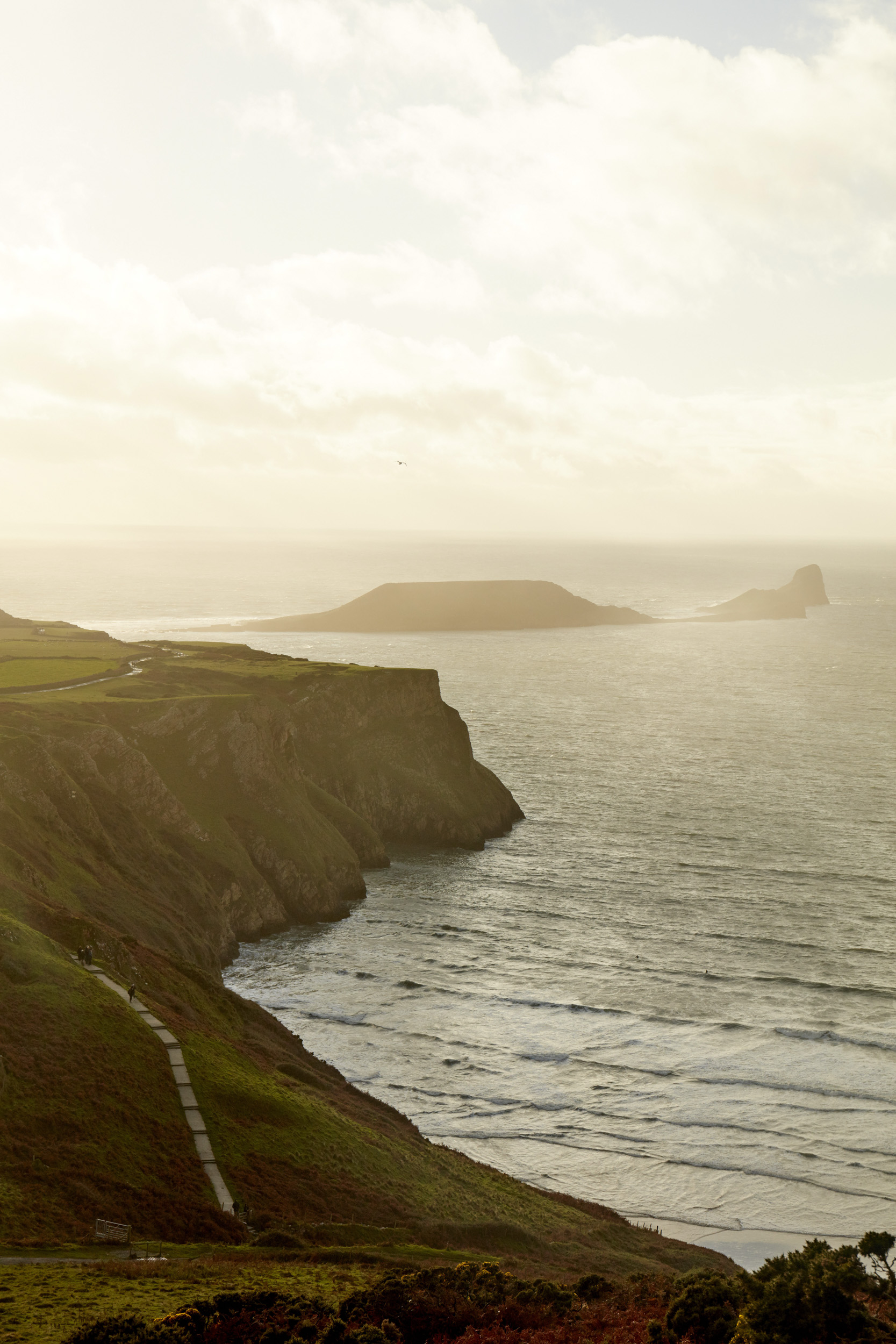 CF_DISCOVER_GOWER_049.jpg