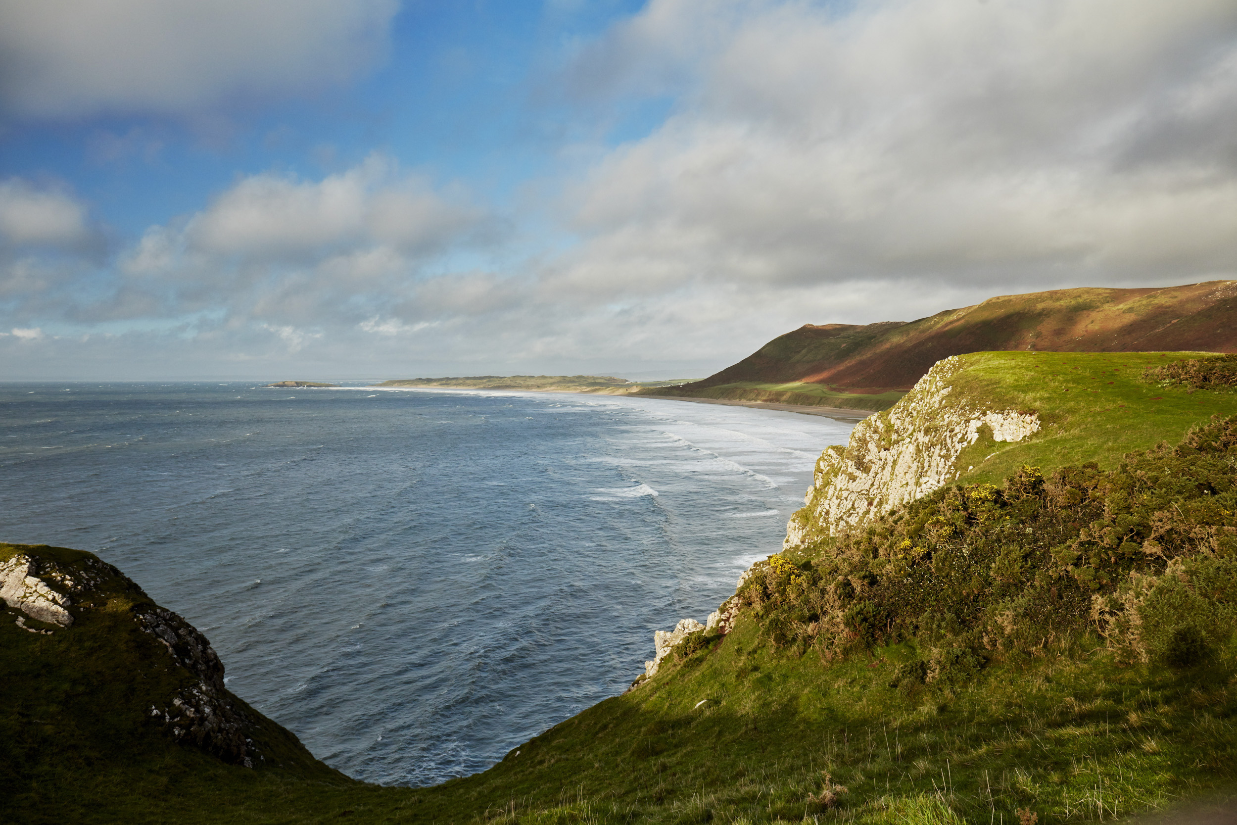 CF_DISCOVER_GOWER_076.jpg