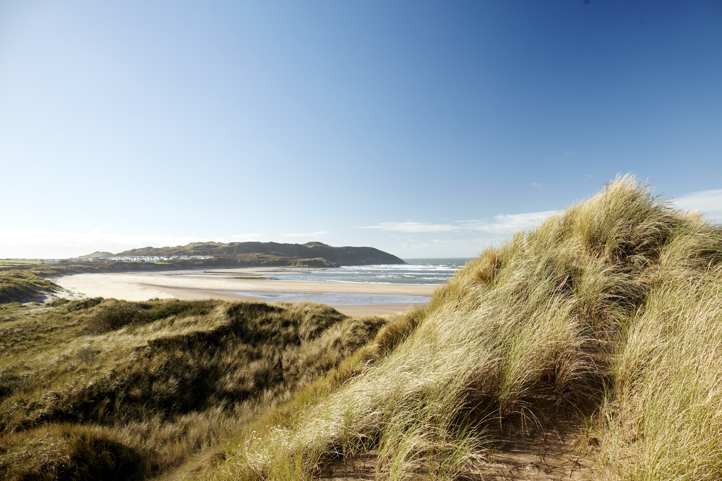 CF_DISCOVER_GOWER_093.jpg