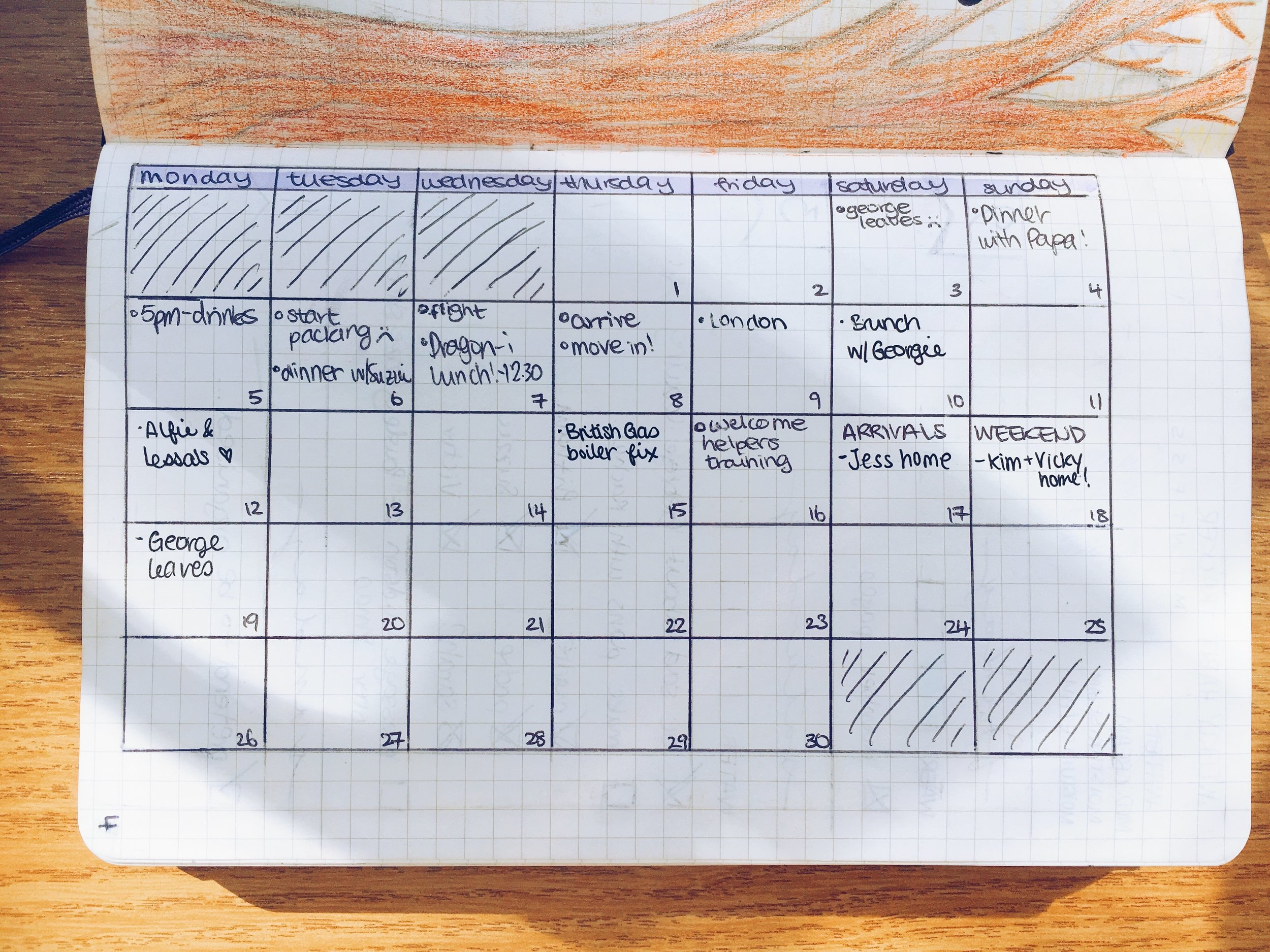 My incredibly exciting plans this month.