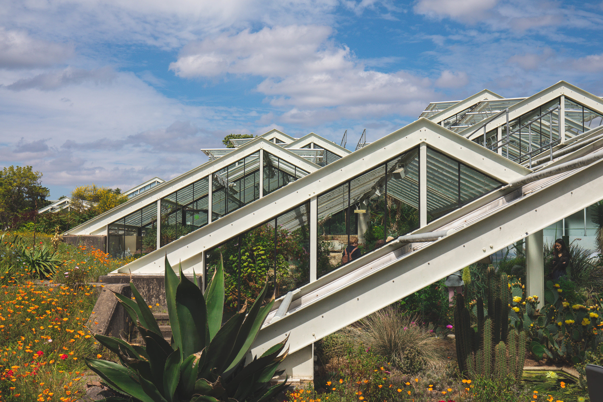 Princess of Wales Conservatory -