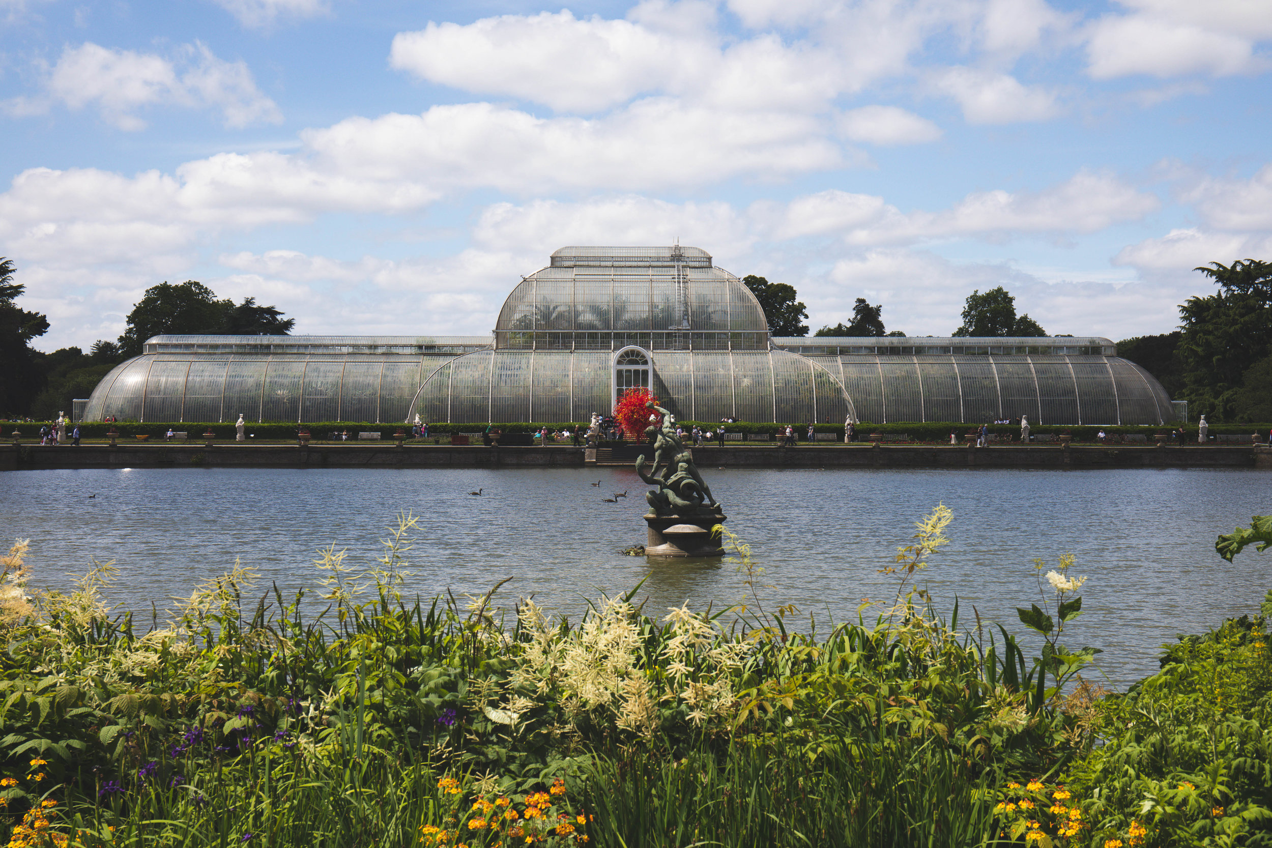 The Palm House -
