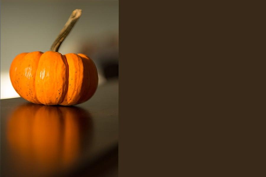 pumpkin reflection