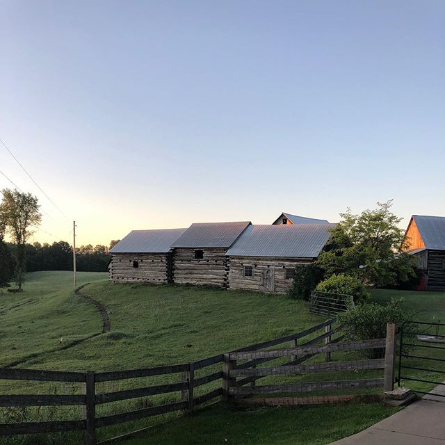 A Peaceful morning at the family farm.  Since 1847 when the first Searson's came from Ireland, there have been 6 generations who have grown up among these buildings.  Closest barn was the first family homestead on the property.  #searson #searsonmusic #searsonband #family #ireland #canada #generations #music #fiddle #irishfiddle #ottawavalleyfiddle #hyndford #quietmorning #barn #homestead @bandsearson