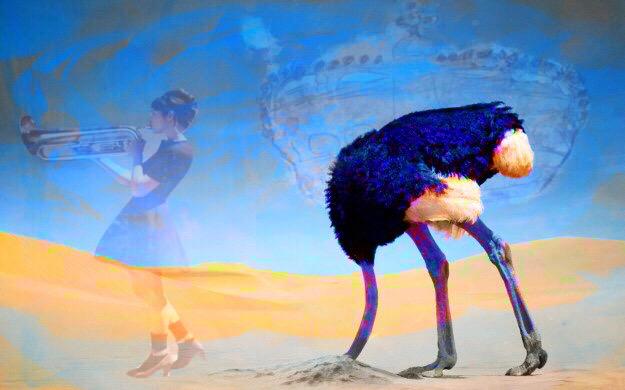 Blue Ostrich.JPG
