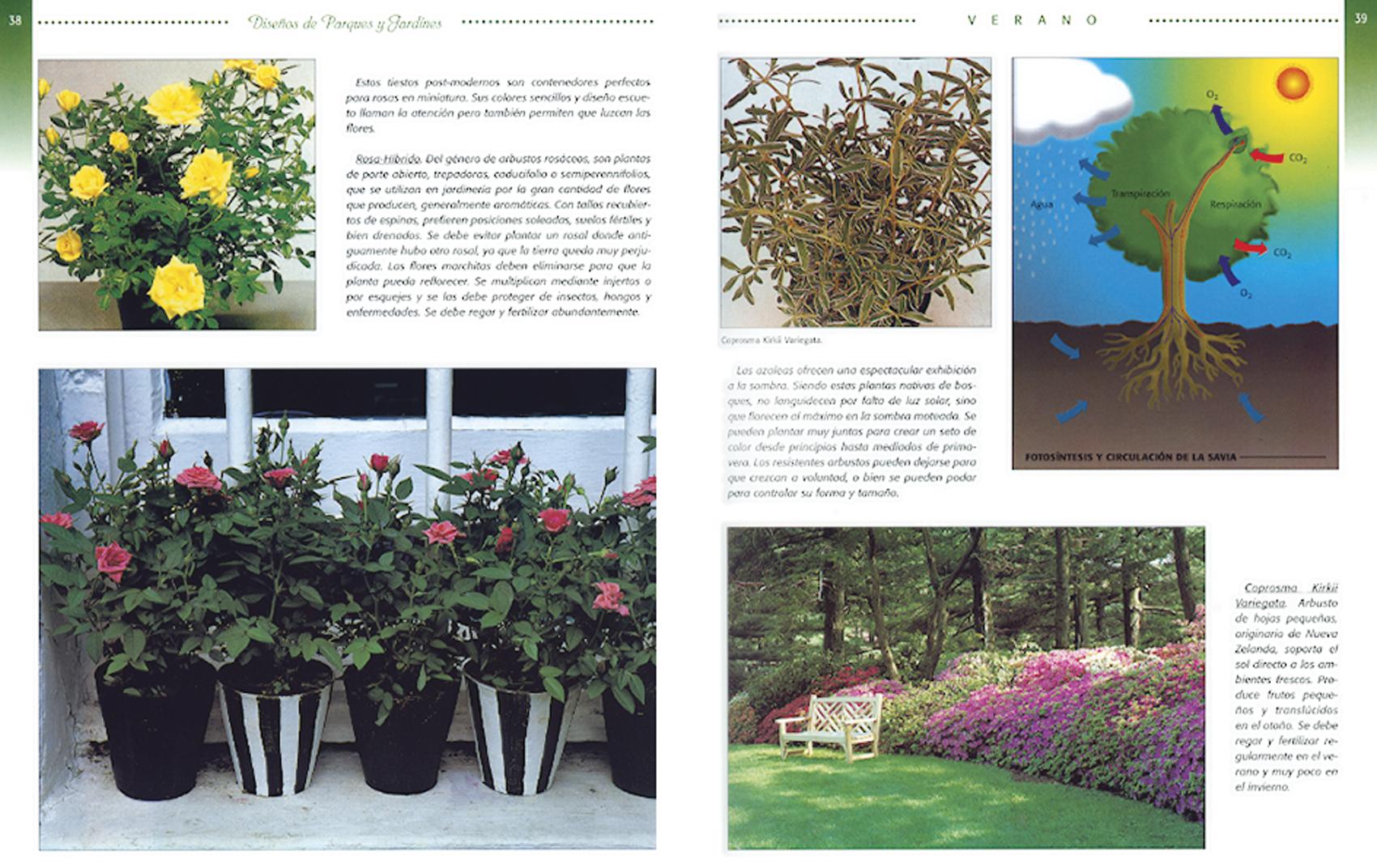 jardineria_3.jpg