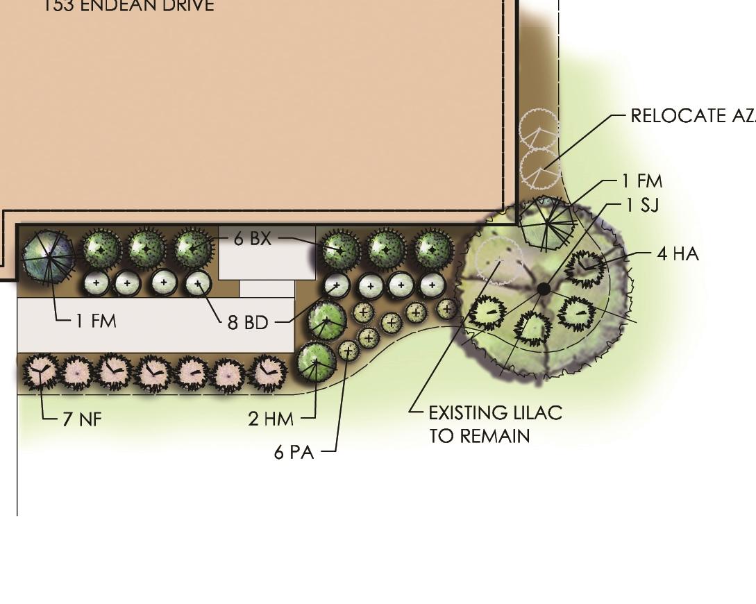 Flynn-landscape plan.jpg