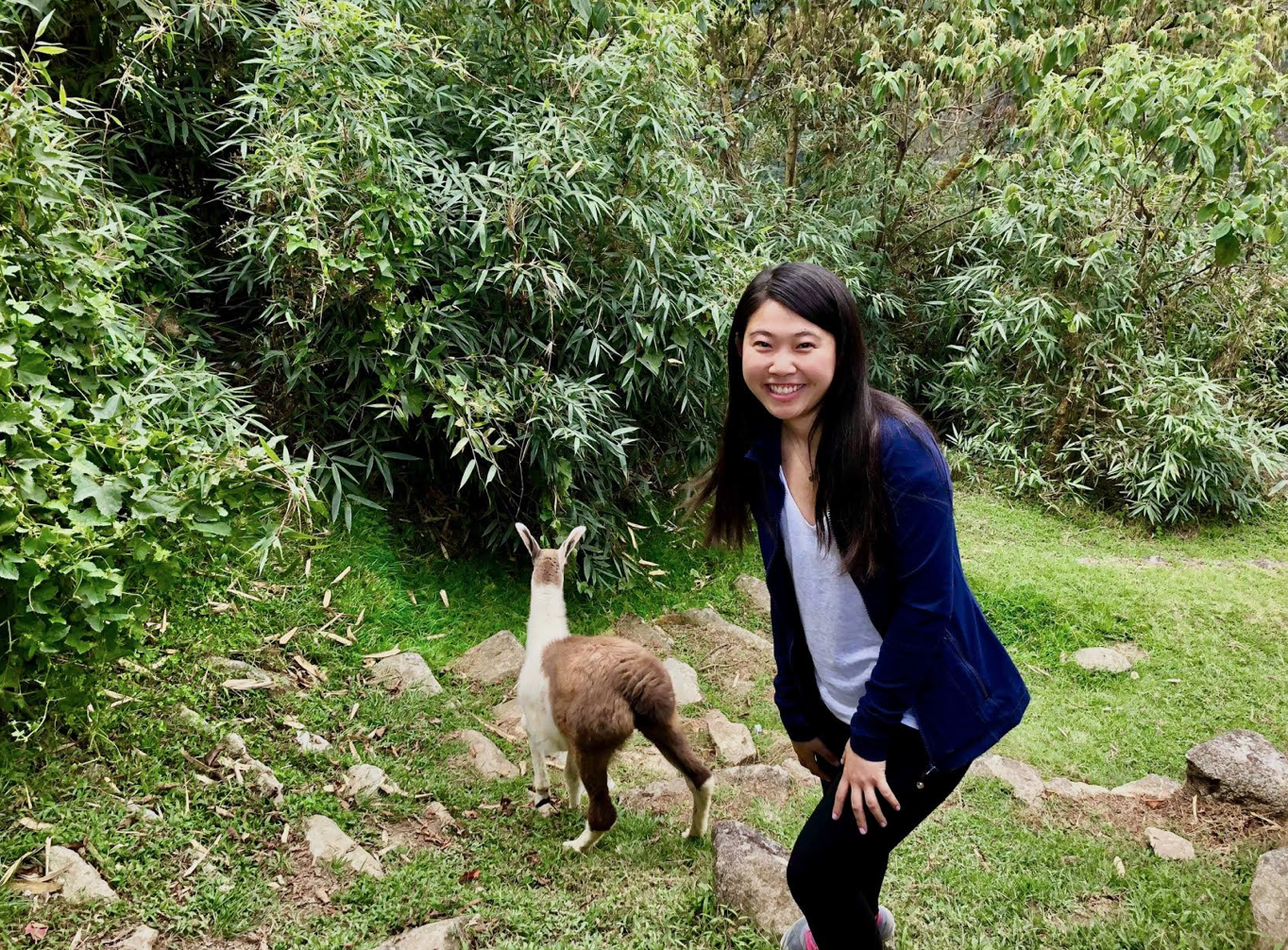 Captured:me at Machu Picchu with a baby alpaca. Not captured:my friend taking the photo laughing at the alpaca's butt, my giddiness of being so close to the alpaca, and eagerness to take the photo. These memories are a non-tangible that I hold dear.