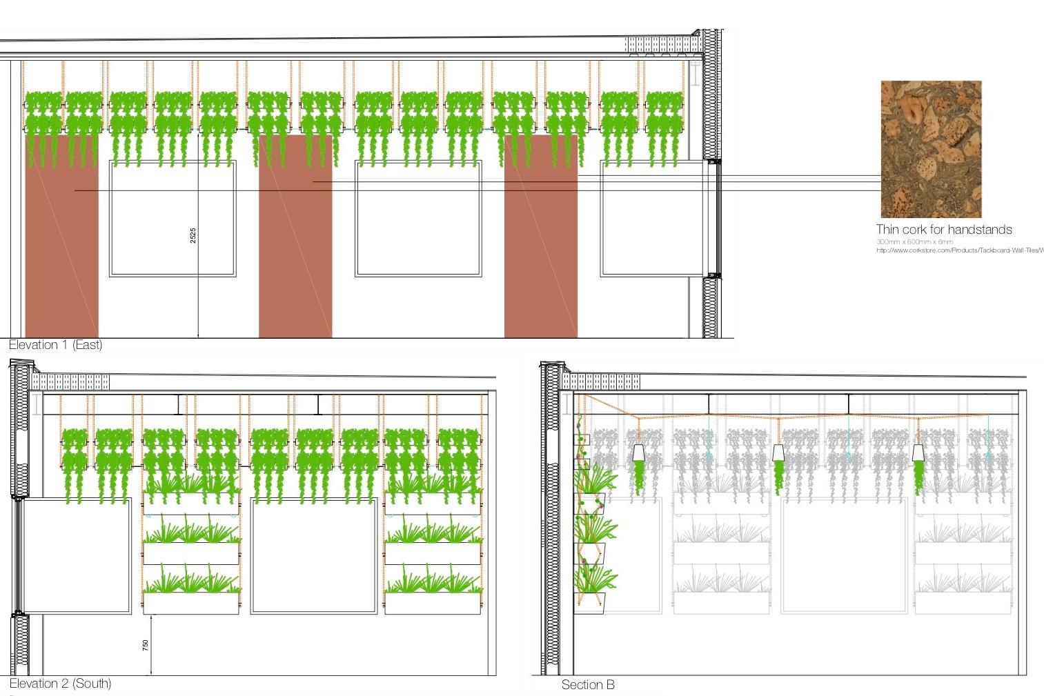 biofit gym design lily jencks.jpg