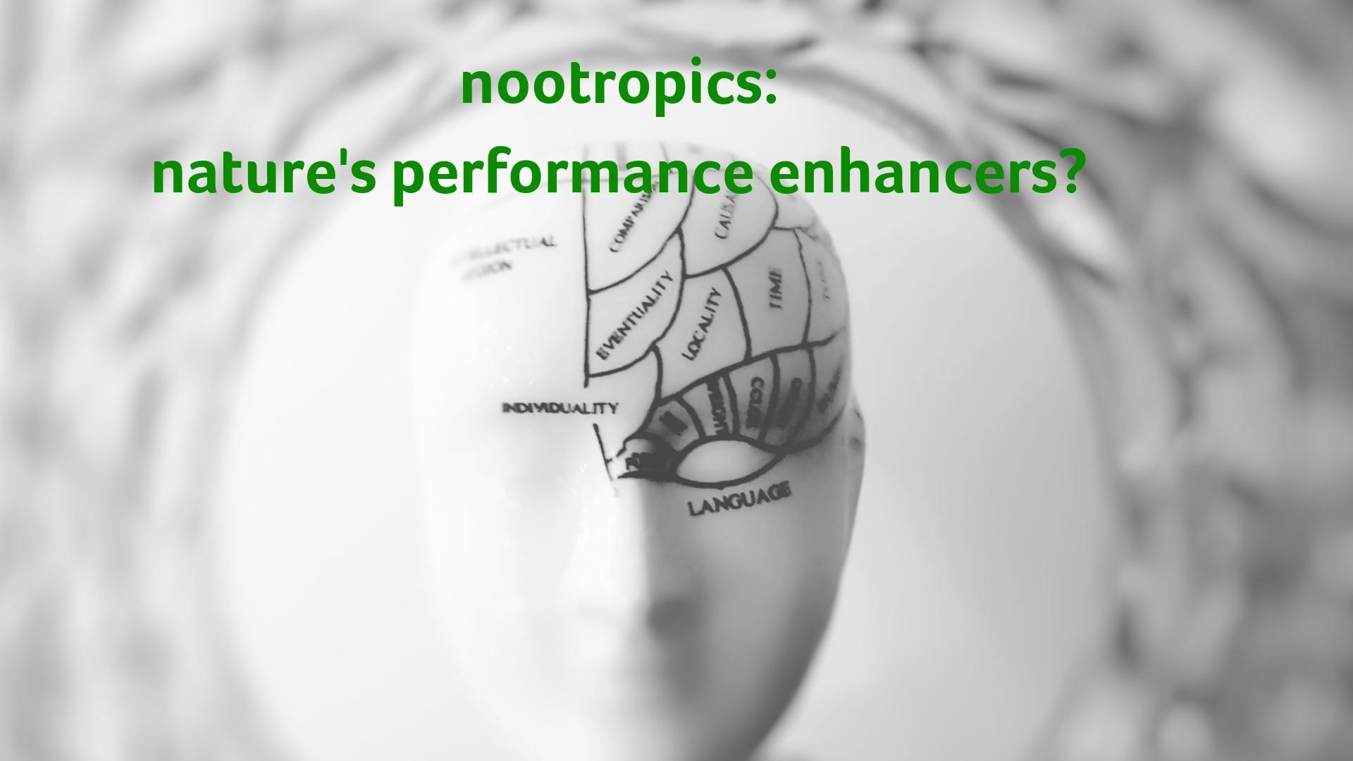 nootropics - nature's own performance enhancers.jpg