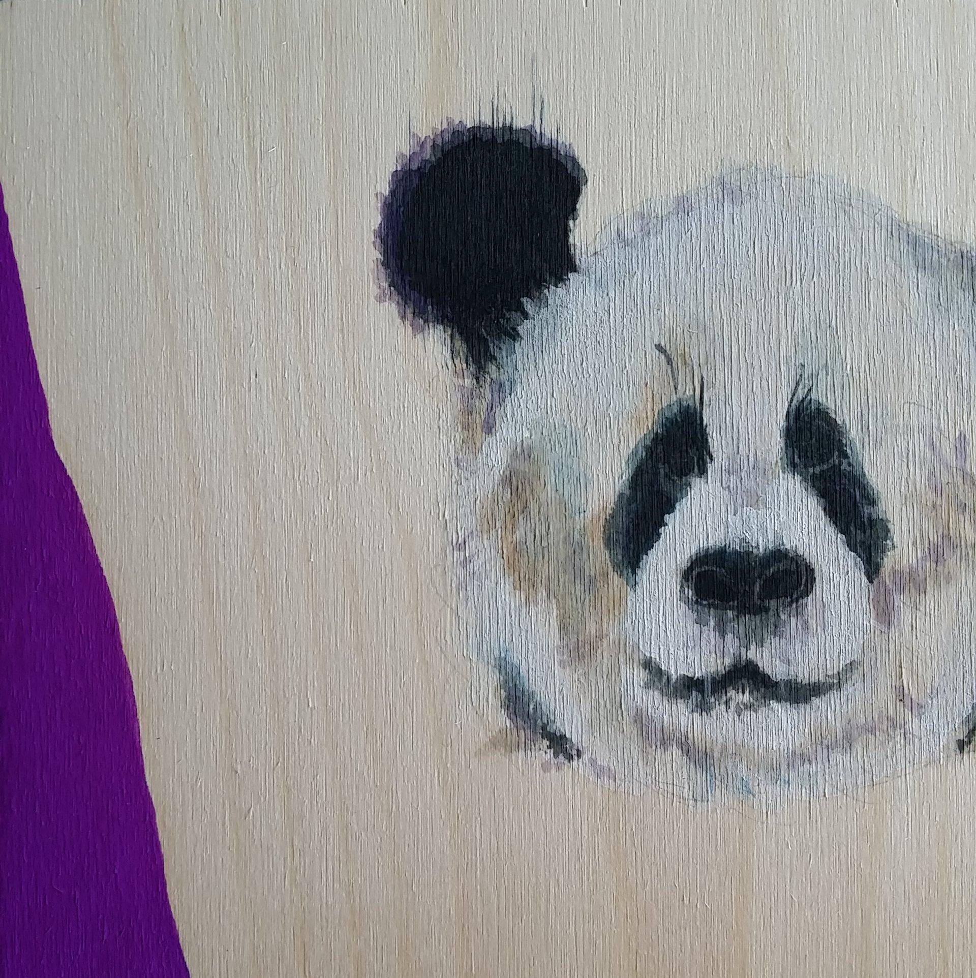 panda1 (1).jpg