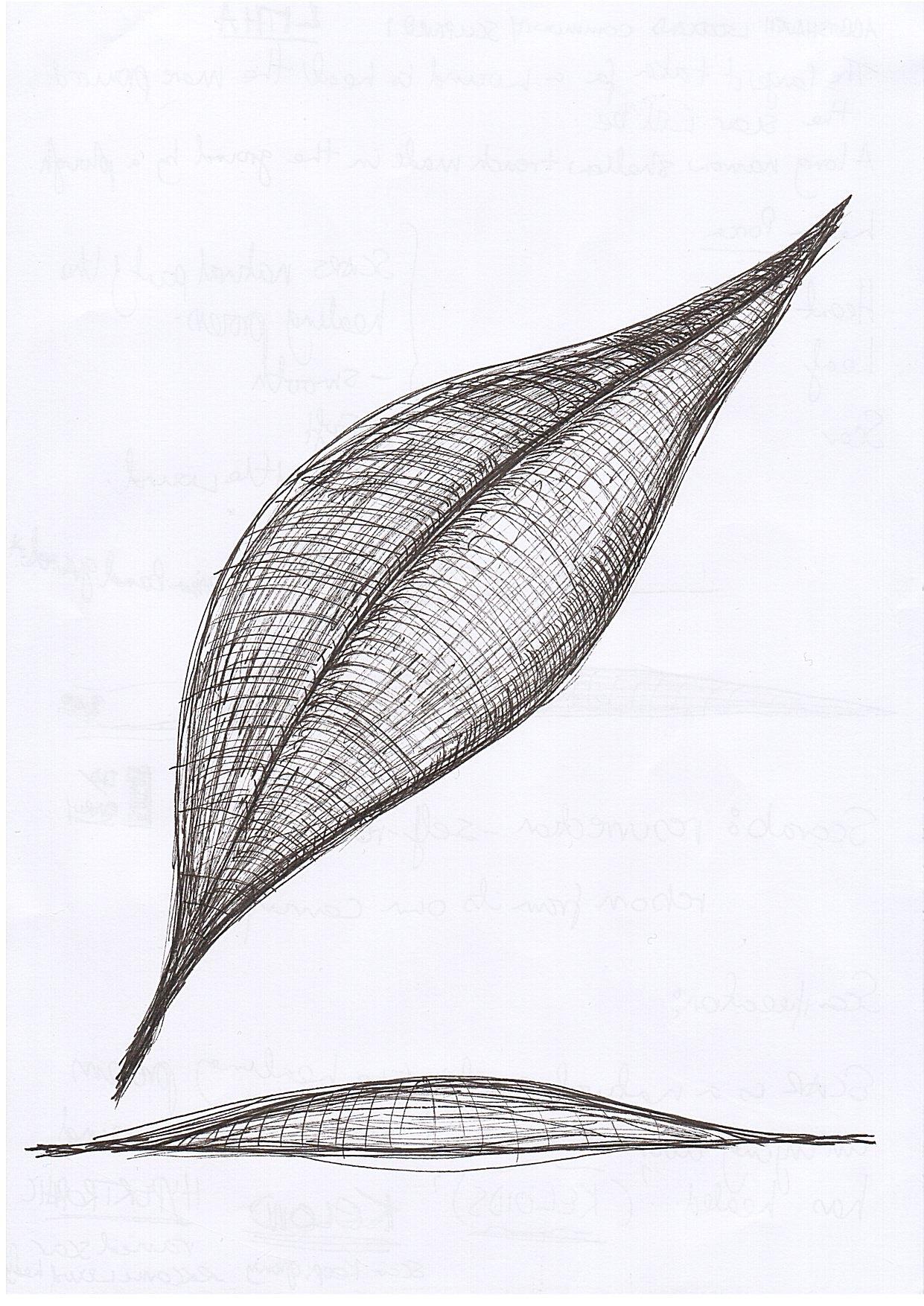 1462698587743 LK sketch 2.jpg
